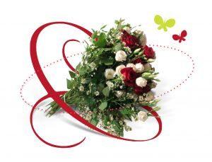 bukiet roz bialych i czerwonych